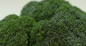 tajna brokule