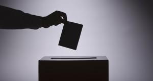 pred izbore