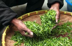 najzdraviji čajevi
